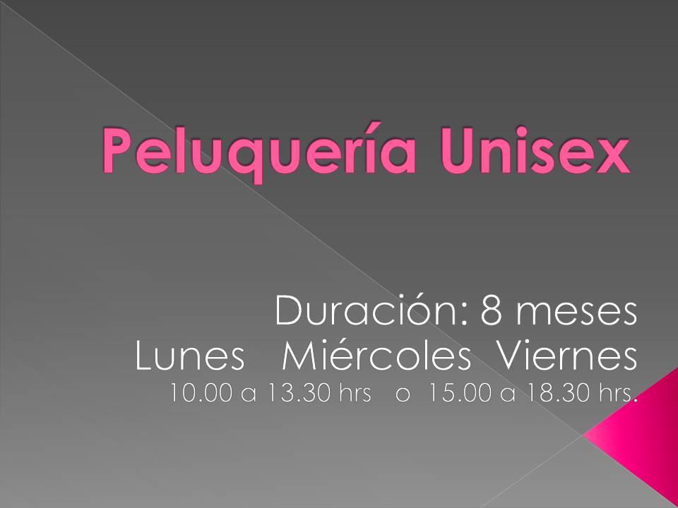 Curso Peluquería Unisex  (Mensual)