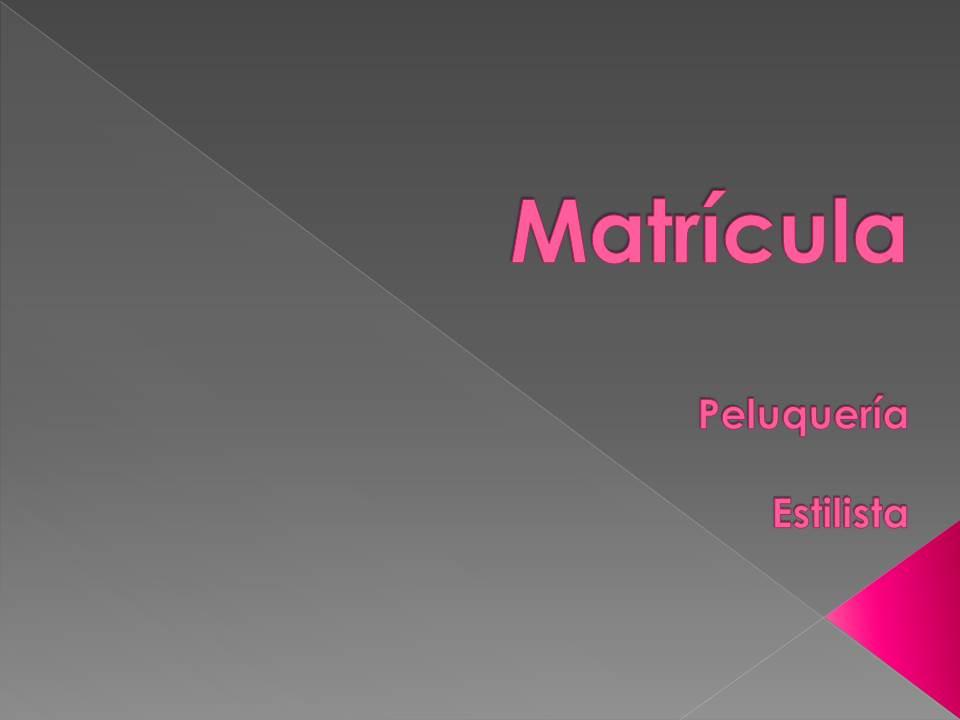 Matrícula Peluquería / Estilista