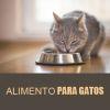 https://vervet.bsalemarket.comalimentos gatos adultos