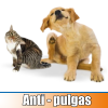 anti pulgas para perros