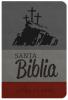 Biblia Letra Grande con Himnario - Gris y bordó