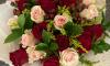 https:  instagram.com flores_de_tete?igshid=l4a6h6t2znf4