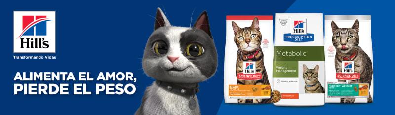 02 1 4 alimentos secos gatos con sobrepeso light?brand_static[]=Hills
