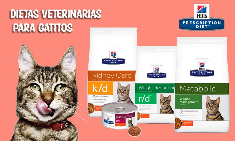 dieta veterinaria hills