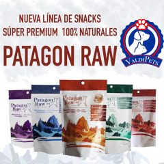 https://www.valdipets.cl/brand/patagon-raw