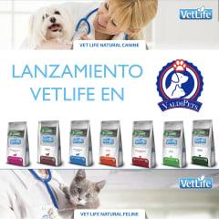 https://www.valdipets.cl/brand/vetlife