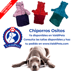 https://valdipets.bsalemarket.com/search?search_text=osito