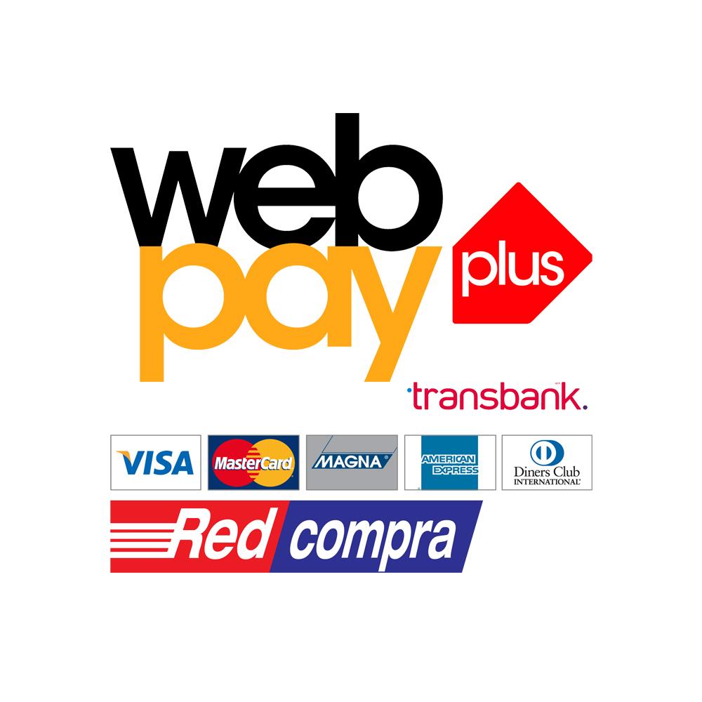 webpay100