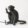 el mono de pablo