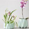 flores y maceteros