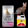 https:  puertopet.bsalemarket.compromo alimento proplan sterilized 7 5kg arena tidy 2 7kg de regalo