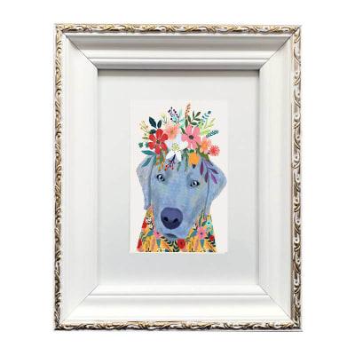 Colección Animales Flores Labrador1