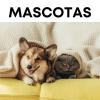 TODO MASCOTAS