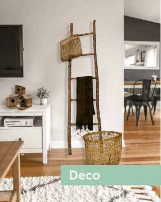 collection decoracion