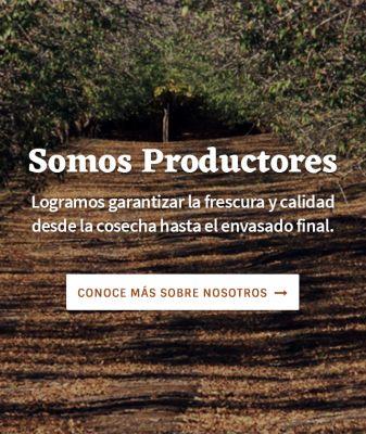 Somos productores, logrando garantizar la frescura y calidad desde la cosecha hasta el envasado final