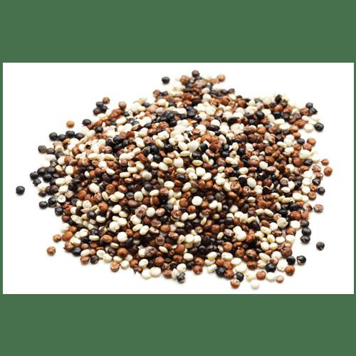 Semilla Quinoa Tricolor