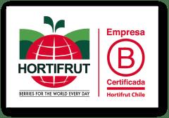 BerryHouse | Más vida, más berries!