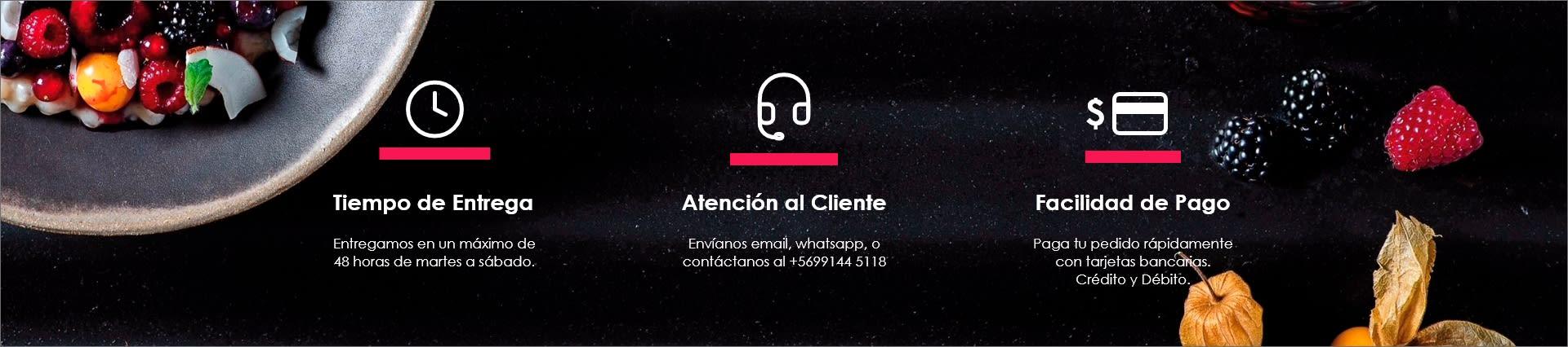 Tiempo de entrega, Atención al cliente y Facilidad de Pago
