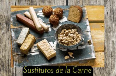sustitutos de la carne seitan tofu