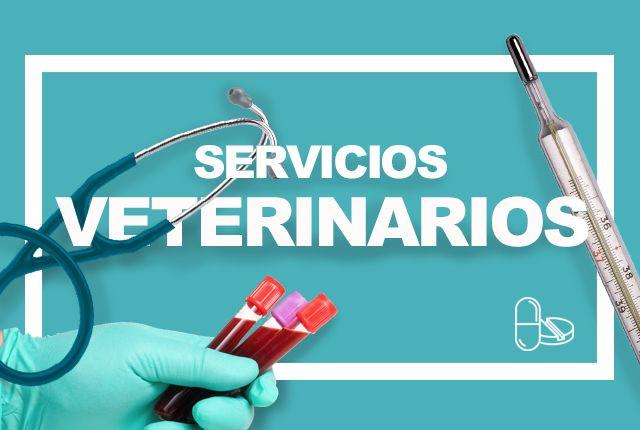 Servicios Veterinarios