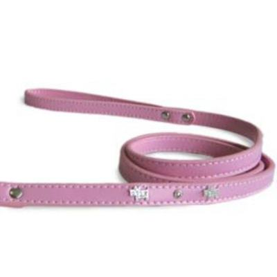 DogoPet Collar and Leash Doggie Bing