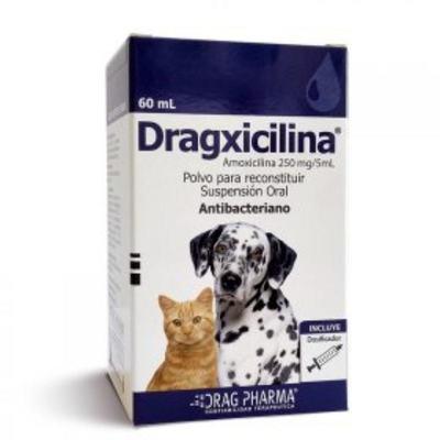 Dragxicilina Susp Oral