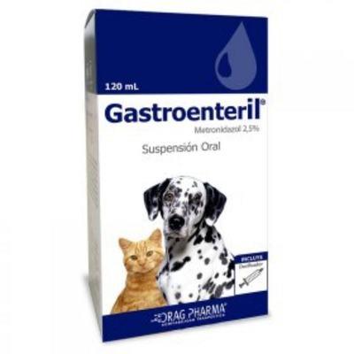 Gastroenteril