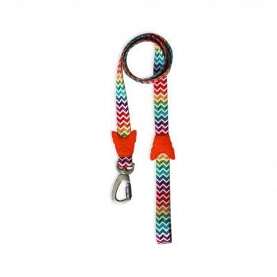 Greendog Leash Rainbow
