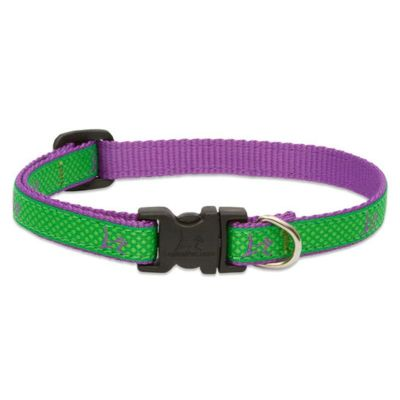 LupinePet Adjustable Collar Club Augusta