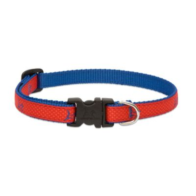 LupinePet Adjustable Collar Club Derby