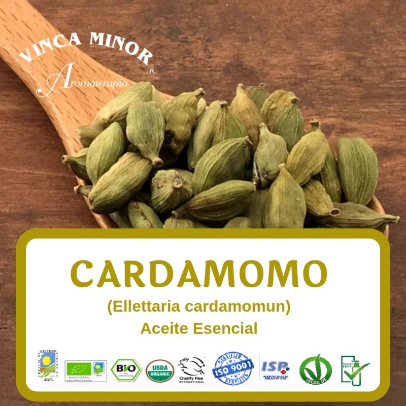 Cardamomo (Ellettaria cardamomun)