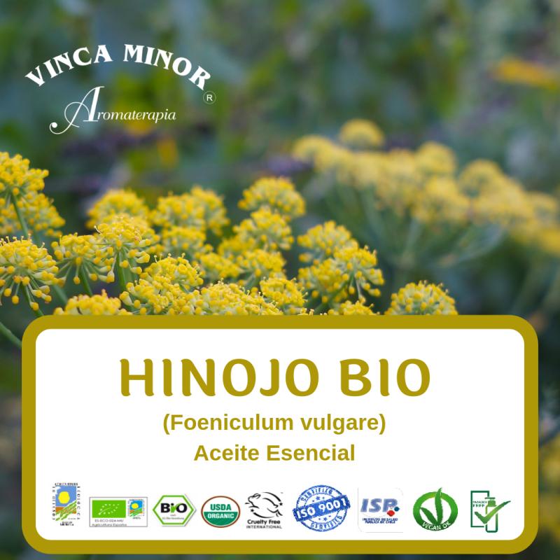 Hinojo Bio (Foeniculum vulgare)