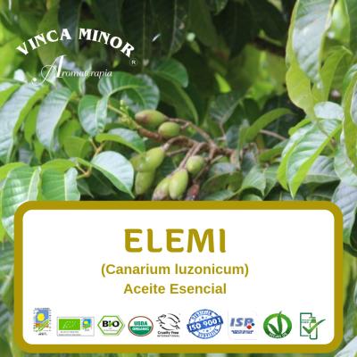 Elemi (Canarium luzonicum)