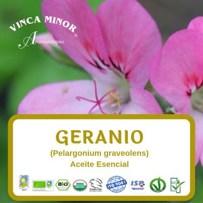 Geranio (Pelargonium graveolens leaf oil)