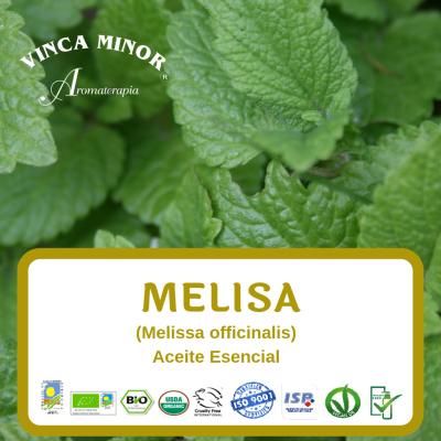 Melisa (Melissa officinalis sobre Limón)