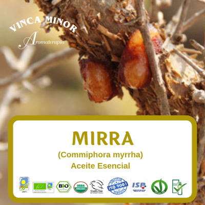 Mirra (RCO, Commiphora myrrha oil)