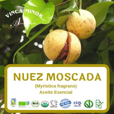 Nuez Moscada (Myristica fragrans)