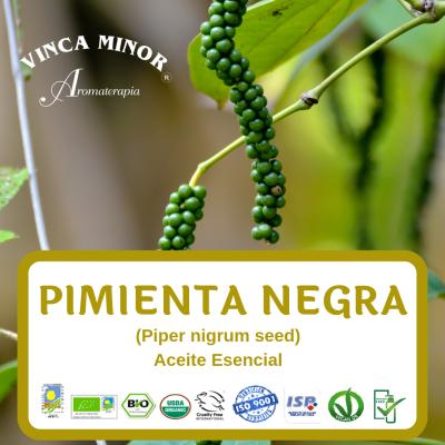 Pimienta negra (Piper nigrum)
