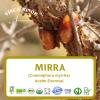 Mirra (RCO, Commiphora myrrha oil)