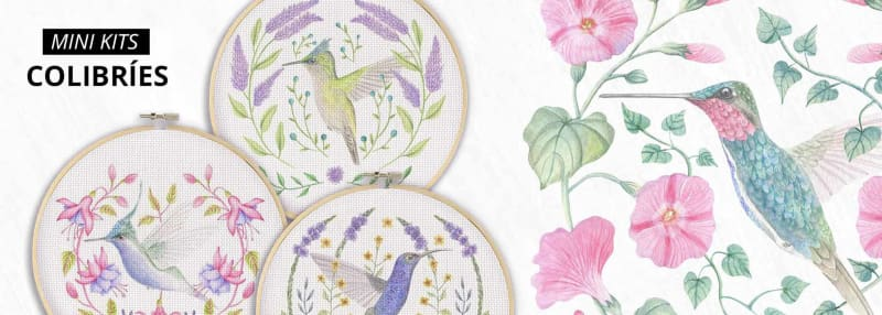 mini kits colibries