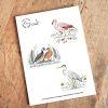 Set Stickers Flamenco- Garza Cuca-Pato Cortacorrientes