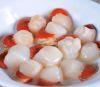 Ostion Coral 500g Congelado