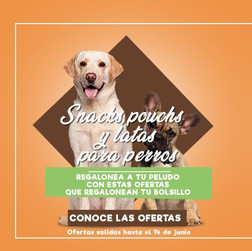 especial snack latas y pouch perro