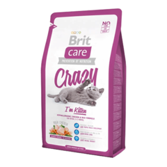 BRIT CARE CRAZY CAT KITTEN