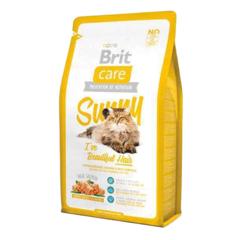 BRIT CARE SUNNY CAT BEATIFUL HAIR